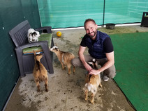 Hanging out with my pygmy goat buddies at a small zoo