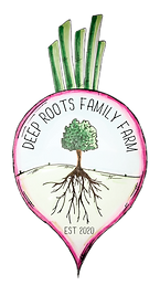 Deep Roots Family Farm Logo XS - Feb 202