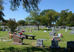 AmaTerra Awarded City of Austin Historic Cemeteries Master Plan
