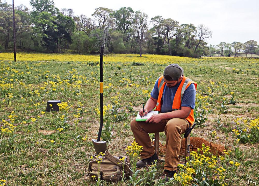 Shovel Testing in Wildflower Field