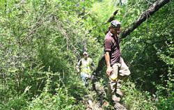 Survey team traverses thick woods