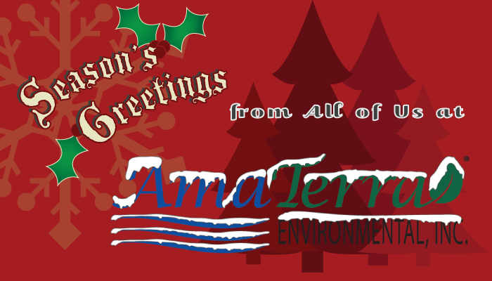 AmaTerra Christmas Card Topper.png