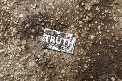 Why truth and integrity, not just democracy, are on trial