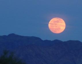 Thirteen Wise Moons