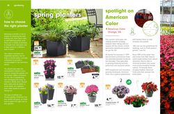 Lidl US, Spring magazine