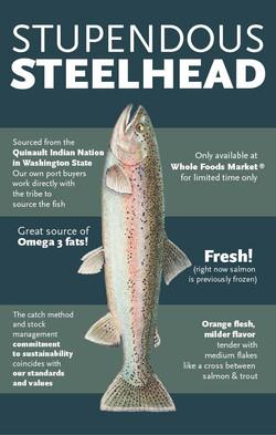 Stupendous Steelhead