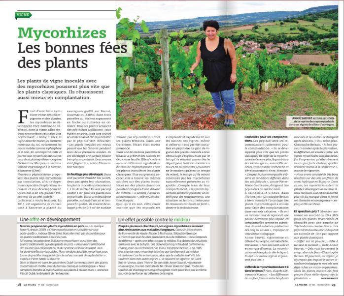 "Article p 28-29 - N°305 mensuel ""La Vigne"""
