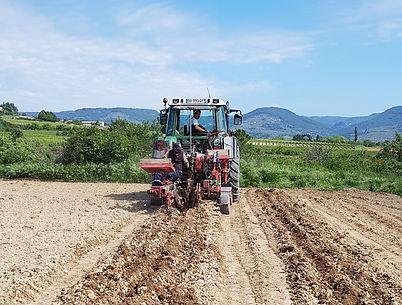 Plantation d'une pépinières grâce à notre machine GPS