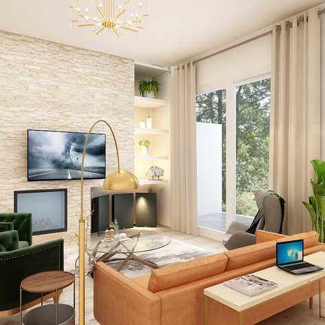 living room 1 anup.jpg