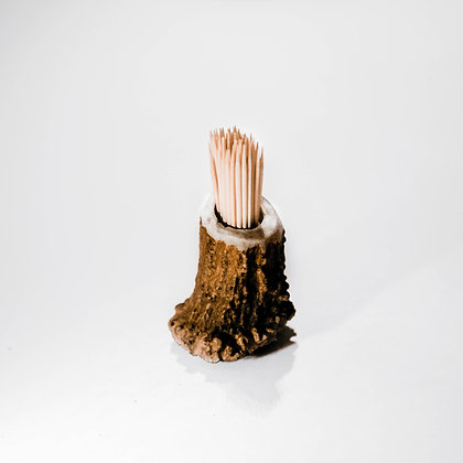 Toothpick holder in moose horn