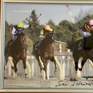 ヴァーミリアン 2008年フェブラリーS優勝写真パネル