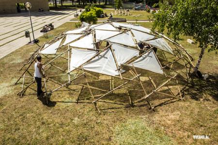 bamboo dome