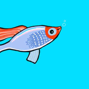 Fish from Memory Game