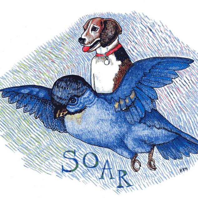 Lils' Flying Lesson book illustration