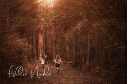 Enchanted Forest Run V2