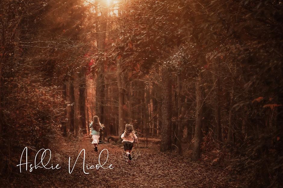 Enchanted Forest Run V2.jpg
