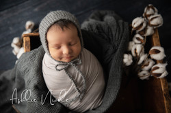 Elliot Beltran Newborn Portraits SP-02
