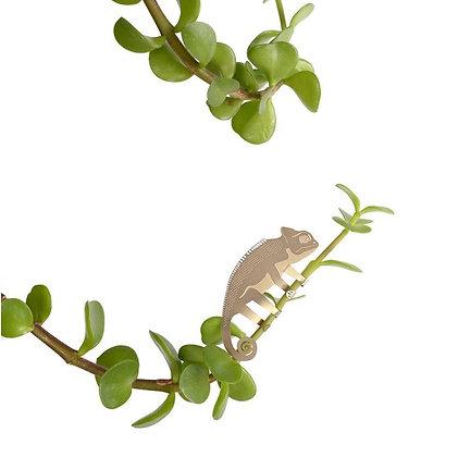 Décoration de plante Caméléon
