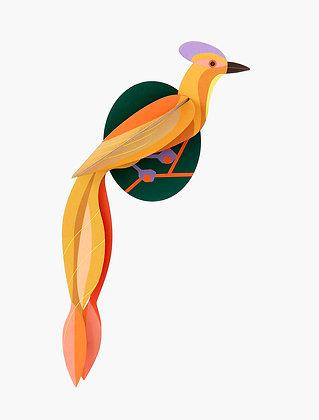 Oiseau 3D à construire - Oiseau Olango