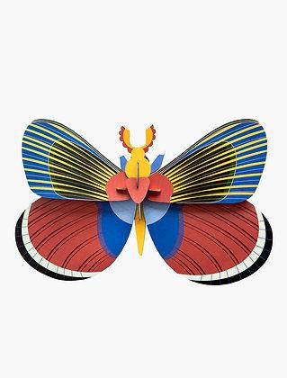 Insecte 3D à construire - Papillon géant