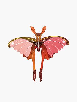 Insecte 3D à construire - Papillon comète Rose
