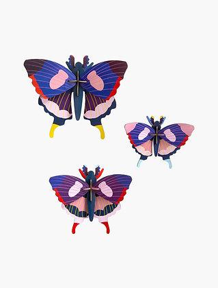 Insecte 3D à construire - Lot de trois papillons