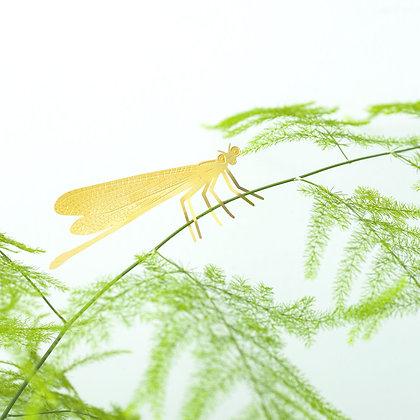 Décoration de plante Demoiselle