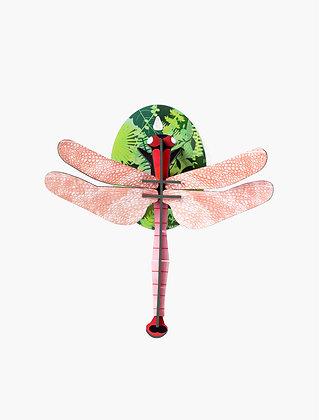 Insecte 3D à construire - Libellule rose