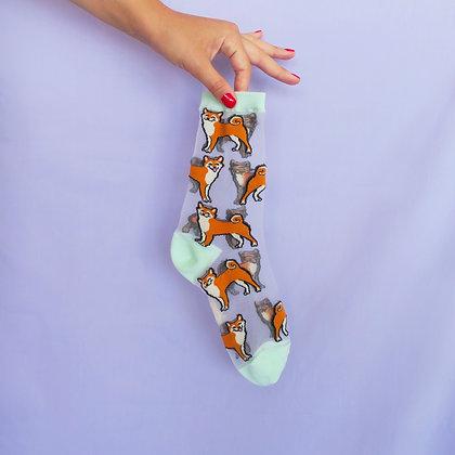 Coucou Suzette - Chaussettes Transparente Shiba