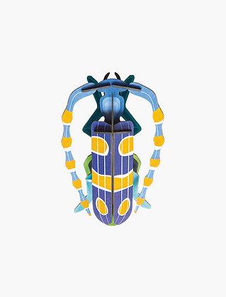 Insecte 3D à construire - Scarabée Rosalie