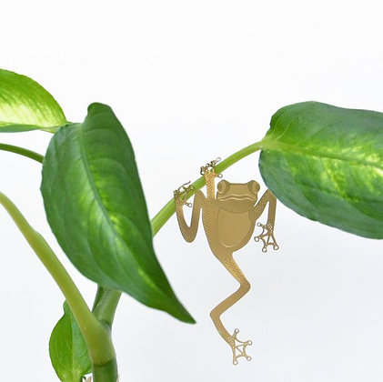 Décoration de plante Grenouille