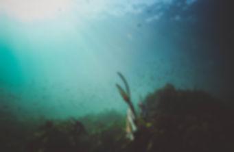 uderwater