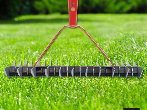What is Scarifying your lawns?