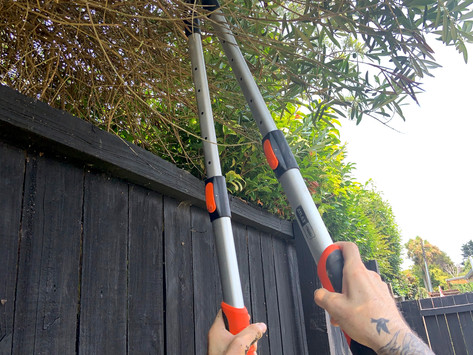 The top pruning tools you need