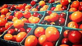 Pretty Saladette Tomatoes