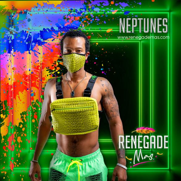 NEPTUNES for Neptune