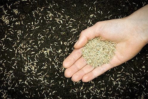 Compost et semis - tranches de 1000 pieds carrés
