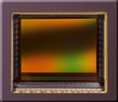 Macnica ATD Europe ATD Electronique CMOS Image Sensors InGaAs Image Sensors Rolling Shutter Global Shutter Sony ams Caeleste Prophesee
