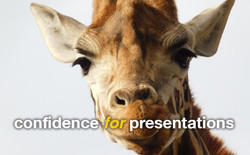 bisarto_confidence_for_presentations3