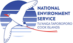 NES logo 1.png