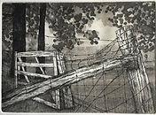 MATTSON Fences (1).jpg