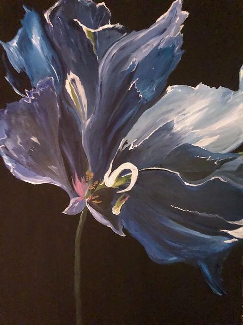 Schlage Blue Orchid.jpg