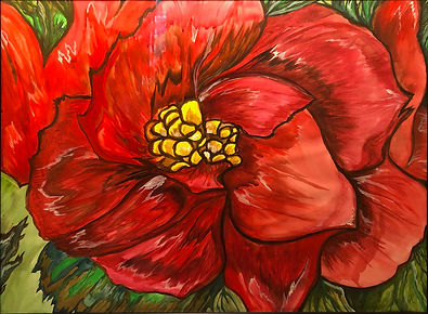 Schalge Begonia.jpg