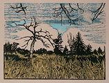 Hubbard Spring Lake, Clouds.jpg
