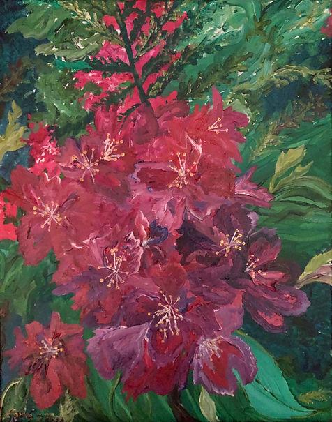 Schlage Rhododendrons.jpg