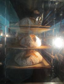 unser eigenes Brot