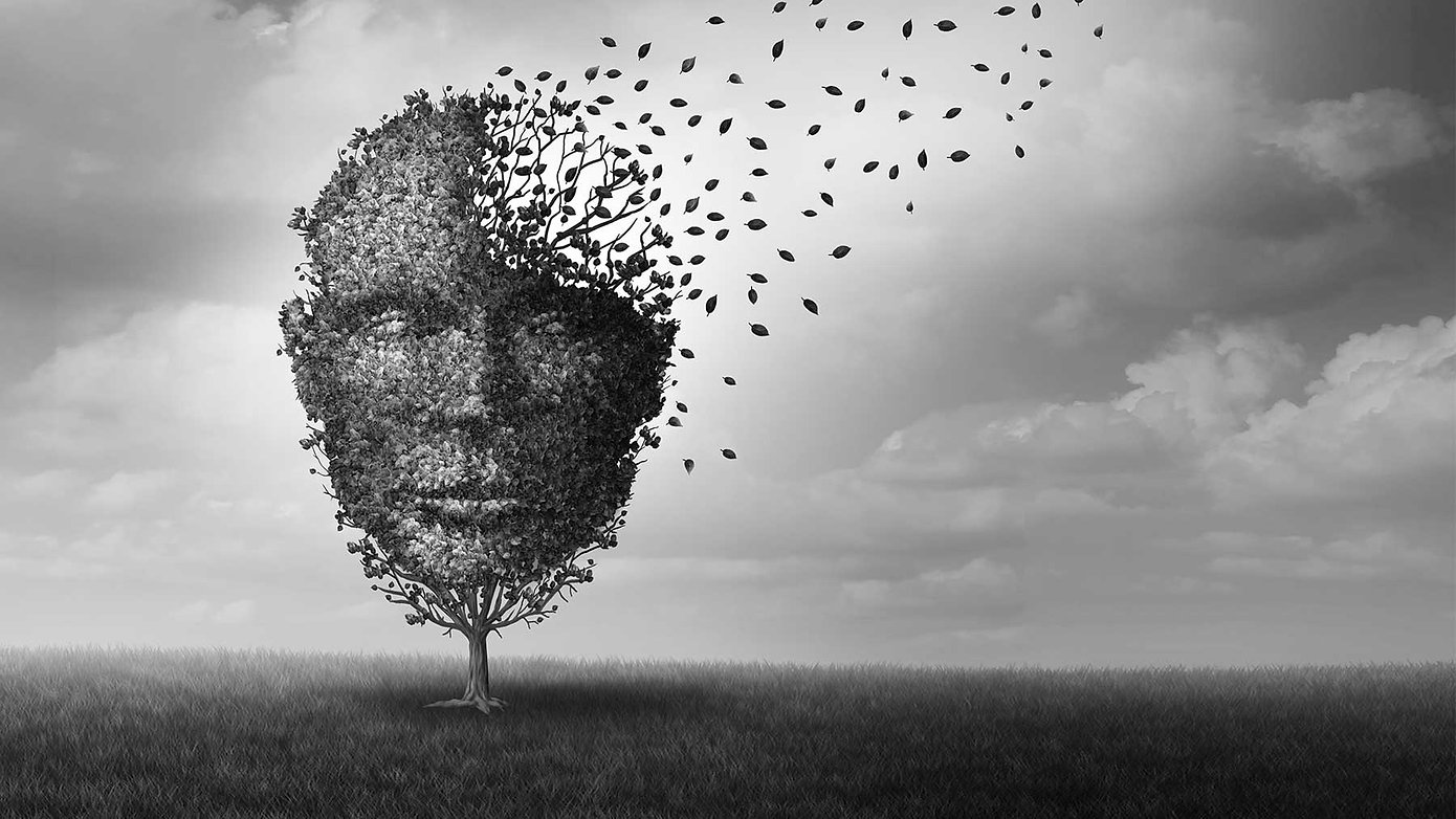 mental-health-tree-concept-hero.jpg