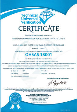 OHSAS18001(iNG).jpg
