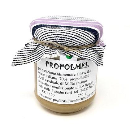 Propolis Honey 250g