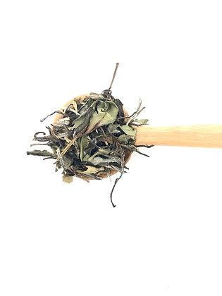 White Tea Pai Mu Tan White Peony 100g